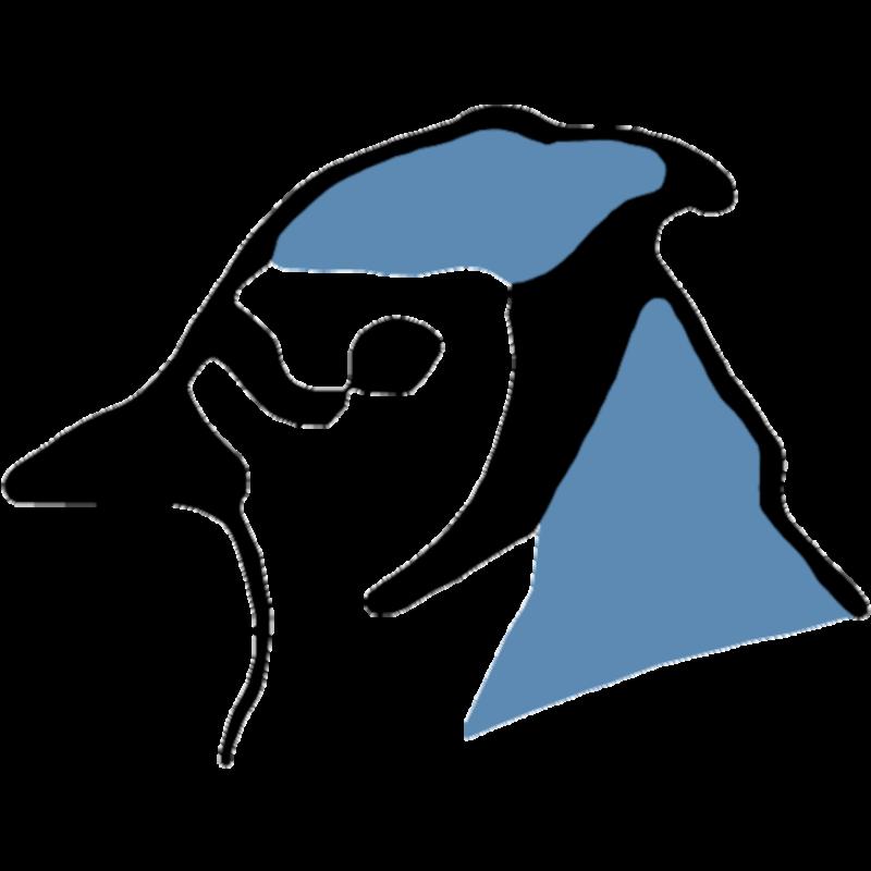 BlueJ logo